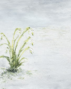 Janette George Snowdrops Wychwood Art
