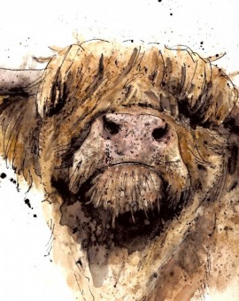 zaza-shelley-highland-coo-wychwood-art