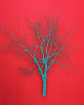 Turquoise Hawthorn