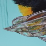 Louise McNaught 6