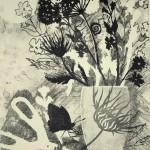 Rosemary Farrer, 'Swallowtail and Wild Carrot', WychwoodArt.jpeg