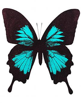 Turquoise Butterfly - WychwoodArt