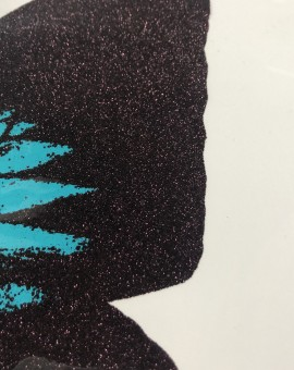 turquoise-papillo-ulysses-claire-robinson-limited-edition-contemporary-print-close-up