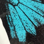 turquoise-papillo-ulysses-claire-robinson-limited-edition-contemporary-print-close-up-6