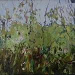 Elaine Kazimierczuk Hedgrerow near Gunthorpe Bridge Wychwood Art