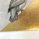 Guy Allen, Kingfisher II, Etching, Animal Art 7