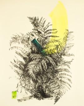 Venetia Norris, Beginings, 65 x 48cm_
