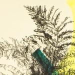 Venetia Norris, Beginings, Detail