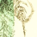 Venetia Norris, Landscape, Place, Region, Surface detail 2