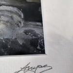 Anya-Simmons-The-Dragons-Teeth-Wychwood-Art-Signature