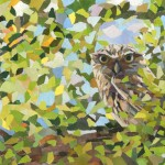 Little-Glimpse-Owl-Art-Collage-Paul-Bartlett-Artist-Wychwood-Art-Gallery