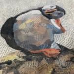 Paul Bartlett, Scratch, Puffin Art, Limited Edition Print - mixed media art, contemporary art, conservation art - angles