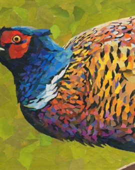 Pheasant-Splendour-Paul Bartlett-Wychwood-Art-Animal-Art