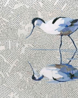 Reflective-Avocet-Paul-Bartlett-Wychwood-Art