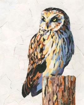 Short-Eared-Owl-Paul-Bartlett-Wychwood-Art