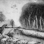 Tim Southall, Mistle Thrush Song, Wychwood Art