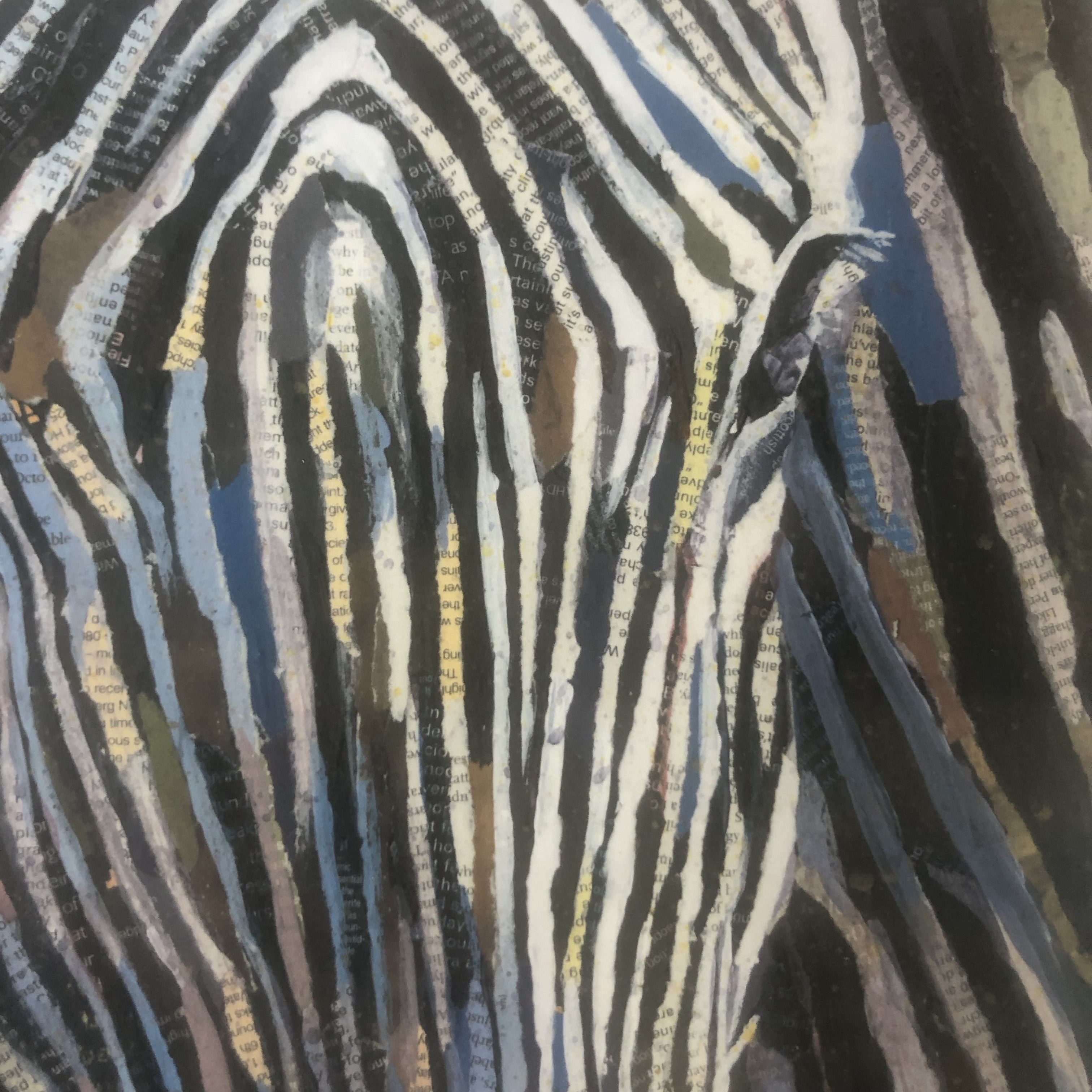 Merging lines is a limited edition print is a run of 100 prints, featuring a beautiful zebra.