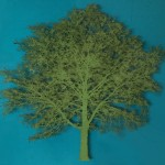 Emma Levine – Green Oak Tree – Wychwood Art