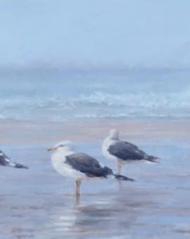 Seagulls-tony-hinchliffe-wychwood-art (2)
