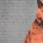 Anne-Storno_Everybody-wants-to-be-a-cat-2 copy 4