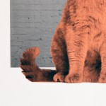 Anne-Storno_Everybody-wants-to-be-a-cat-2 copy 7