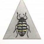 Golden Beetle Study