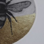 Guy Allen, Bee Study, Limited Edition Print 2