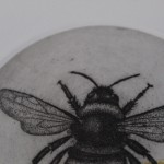 Guy Allen, Bee Study, Limited Edition Print 3