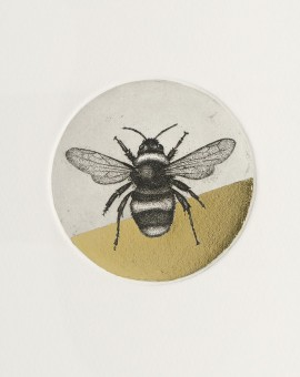 Guy Allen_Bumblebee Study_Etching, aquatint and gold leaf_8x8cm