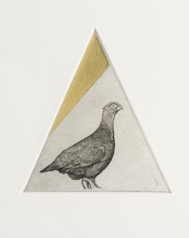 Guy Allen_Grouse Study_Etching, aquatint and gold leaf_8x8cm