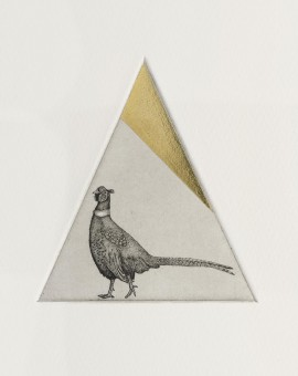 Guy Allen_Pheasant Study_Etching, aquatint and gold leaf_8x8cm