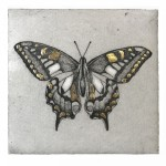 Swallowtail Butterfly Study