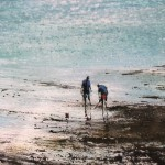 michael-sanders-rock-pooling-at-st-mawes-seascape-classic-limited-edition-close-up-5