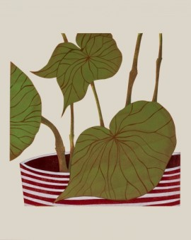 Begonia-Kerry-Day-True-Plant-Art-Wychwood-Art