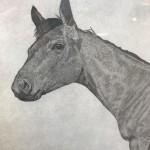 Guy-Allen-Horse-Study-Red-Close-Original-Print-Buy-Art-Online
