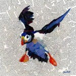 Large-Puffin-Landing-Wychwood-Art-Affordable-Art