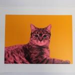 Anne Storno Cat 2