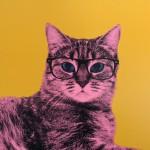 Anne Storno Cat 3
