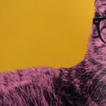 Anne Storno Cat 4