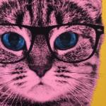 Anne Storno Cat 5
