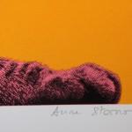 Anne Storno Cat 8