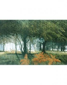 Dawn-Glade-Phil-Greenwood-Wychwood-Art-etching-aquatint