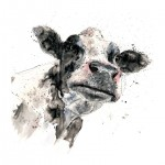 Nosy-Cow-Zaza-Shelley-Wychwood-Art