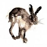 Running-Hare-Zaza-Shelley-Wychwood-Art-Affordable-Art