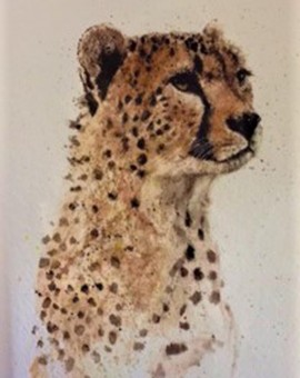 Zaza-Shelley-Wychwood-Art-Cheetah-Art