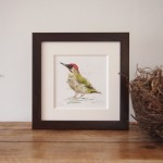 green-woodpecker-framed-art-Zaza-Shelley-Wychwood-Art