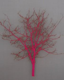 Emma-Levine-Pink-Hawthron-Wychwood-Art