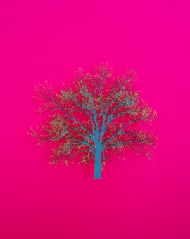 Emma Levine art for sale. Hot pink background with bright green tree sculpture.