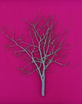 Steel-Silver-Grey-Hawthorn-Wychwood-Art-Emma-Levine-Artist