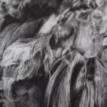 Tammy Mackay, True Colours, Dodo Print, Animal Art, Affordable Art 7